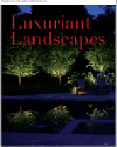Luxuriant_Landscapes_Adjusted_nn