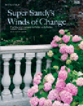 Super_Sandy_adjusted