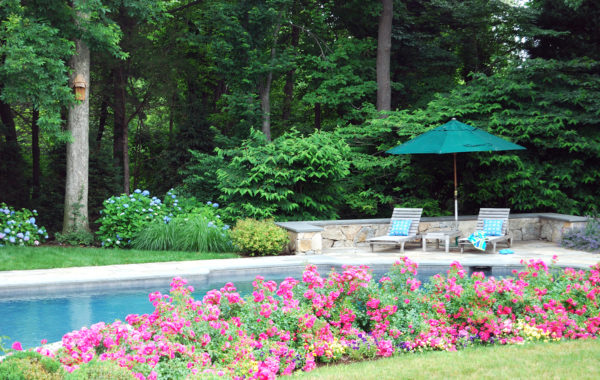 Pool, Patio and Perennial Garden