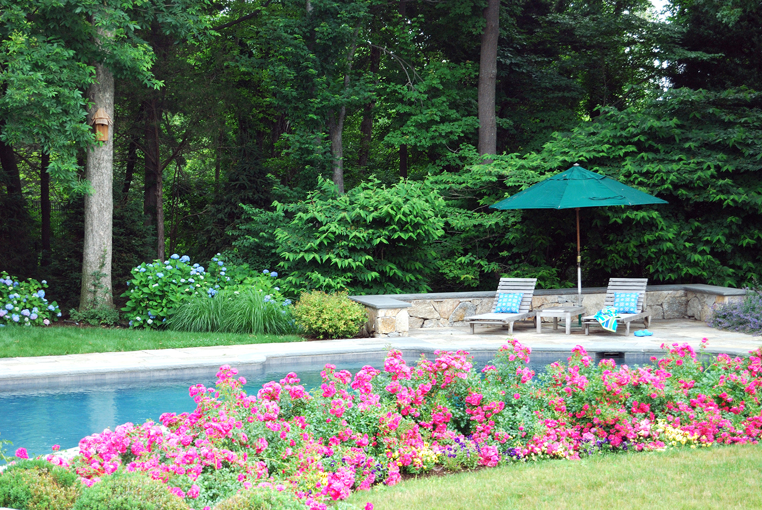 Pool patio and perennial garden hoffman landscapes for Garden training pool