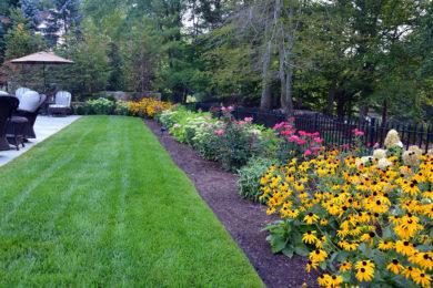 Landscape Planting 26