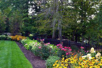 Landscape Planting 27