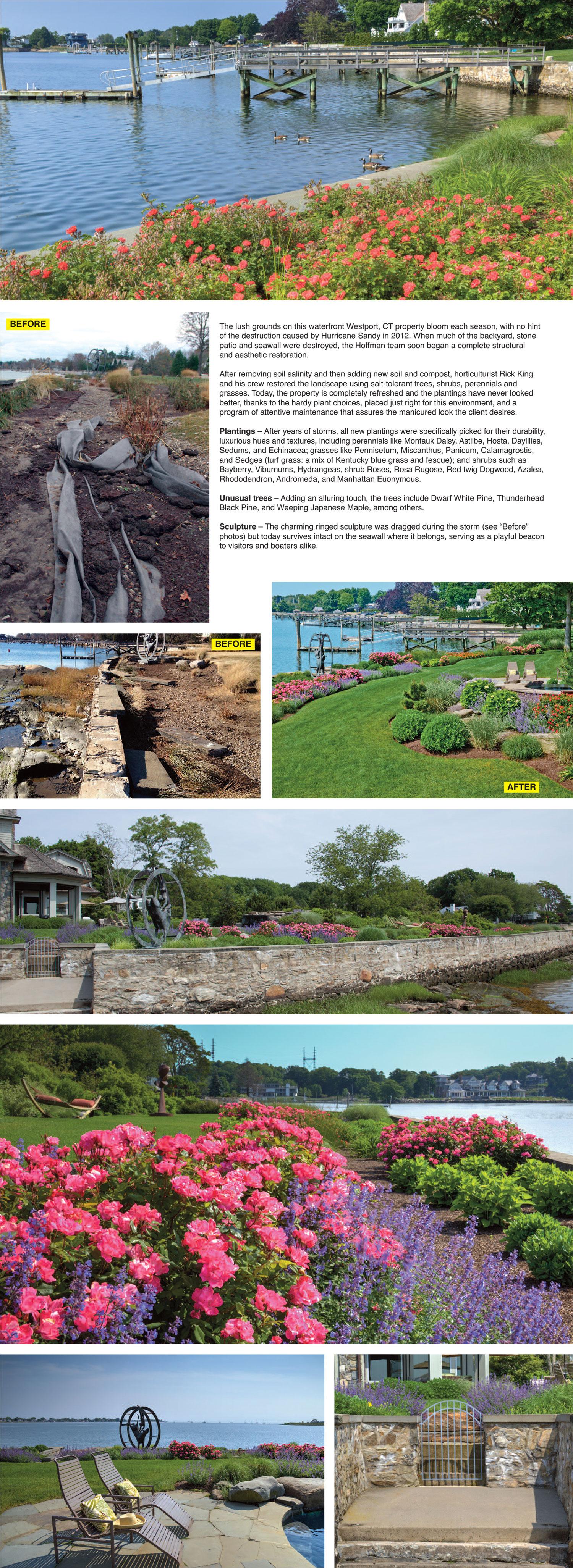 Landscape Design 5