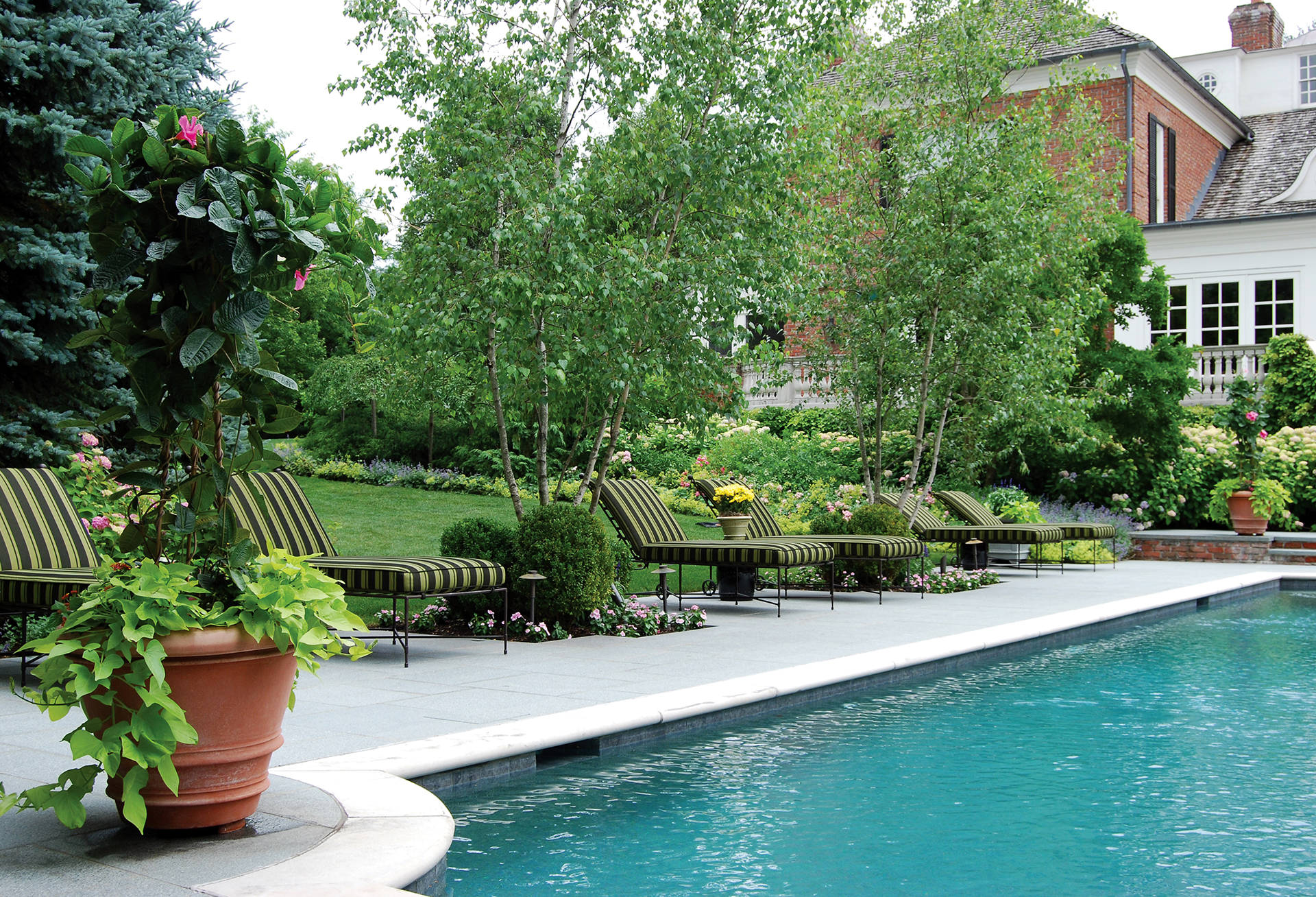 Hoffman Landscapes Inc Lawn Care Services In The Fairfield Darien Ct Areas